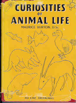 Image for Curiosities of Animal Life