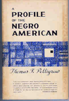 Image for A Profile of the Negro American