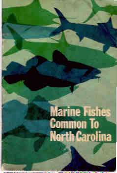Image for Marine Fishes Common to North Carolina