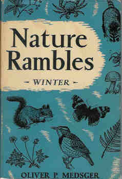 Image for Nature Rambles:  Winter (An Introduction to Country-Lore)