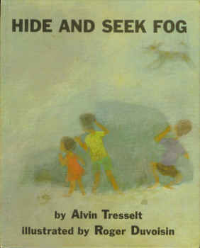 Image for Hide and Seek Fog